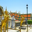 Vtew of Wat PhrKaew — Stock Photo #10715630