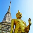 Golden Buddharupat Wat Arun — Stock Photo #10716991