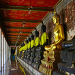 Buddharupa in the row - Stock Photo