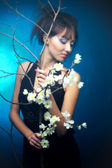 A girl in a black dress with a branch of cherry blossoms, blue — Stok fotoğraf