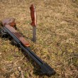 Rifle and knife on a grass — Stock Photo #10220051