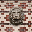 Stock Photo: Lion head