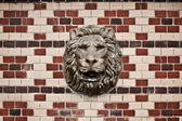 Tête de lion — Photo