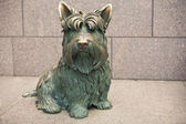 Dog at the Franklin Delano Roosevelt Memorial — Zdjęcie stockowe