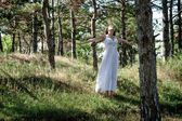 In the forest — Stockfoto
