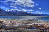 Lake Wanaka — Stock Photo