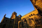 Večerní pohled na katedrálu münster — Stock fotografie