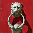 Bronze lion door knocker — Stock Photo #9695514
