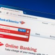 Bank of America website — Stock Photo #9778494