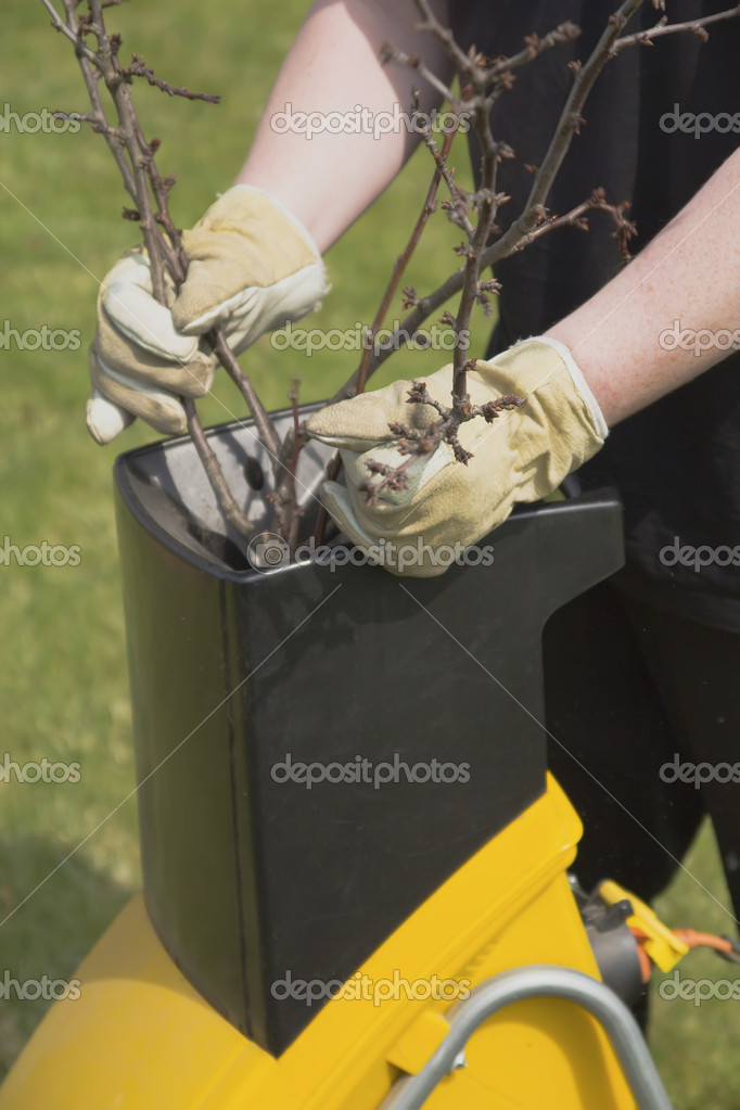 Hands worker who pushed the branch to the crusher — Stock Photo #10054405