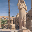 The most famous statue in the temple complex in Luxor (Egypt) — Stock Photo
