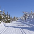 Winter mountain landscape with cross country skiing way. — Stock Photo #10359980