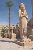 The most famous statue in the temple complex in Luxor (Egypt) — Стоковое фото