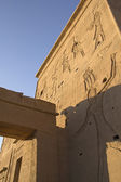 Carved wall of the Temple Philae Egypt) — Stock Photo