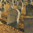 Jewish cemetery in Libochovice (Czech Republic), founded in 1583 — Stock Photo #9422073