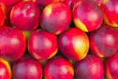 Nectarines in a market — Photo