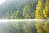 лесное озеро в осеннее утро — Стоковое фото