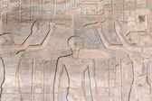 Hieroglyphs in the Temple of Kom Ombo (Egypt) — Stockfoto