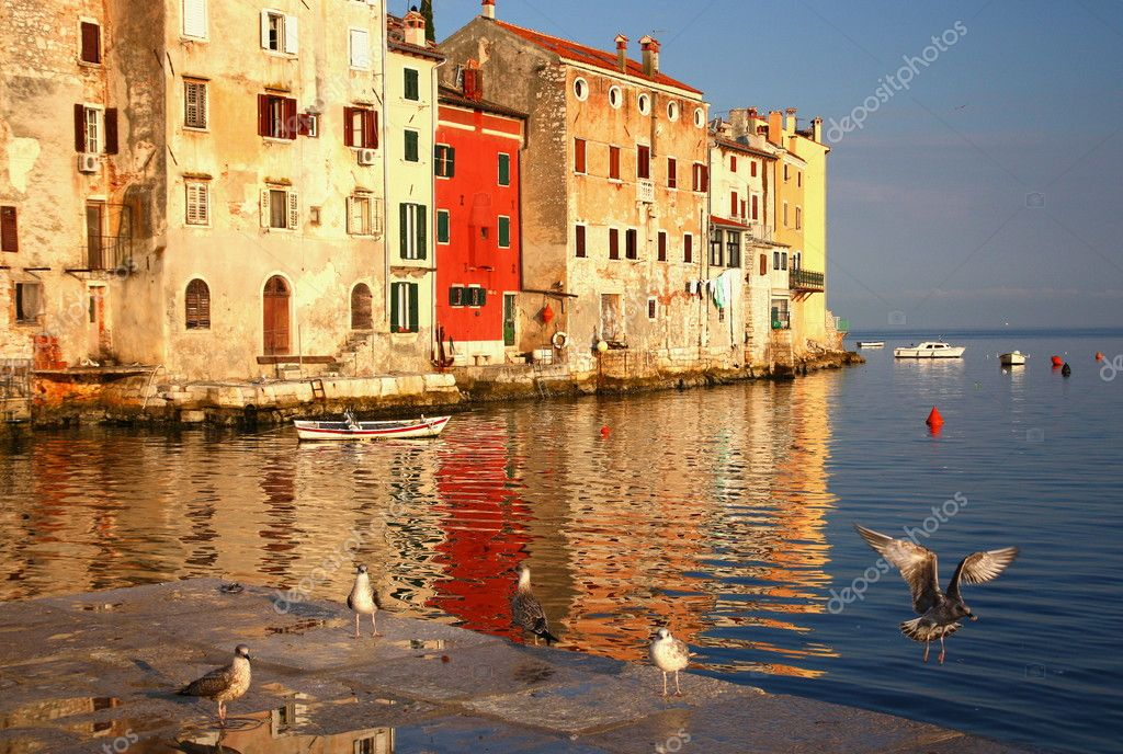 Nice morning in the port of Rovinj in Croatia (with seagulls)  Stock Photo #9555953