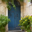 Old blue door and flowers in pots - Stock Photo