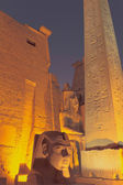 The entrance to the Luxor Temple at night (Egypt) — Stock Photo