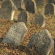 Jewish cemetery in Libochovice (Czech Republic), founded in 1583 — Stock Photo