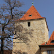 Prague Castle. Daliborka Tower. (Czech Republic) - Stock Photo