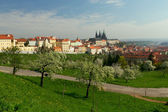 Prague-overall view of Prague Castle — Stock Photo