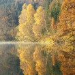 Stock Photo: Beautiful forest lake in the autumn morning