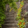 Old stone stairs in the garden — Stock Photo