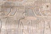 Hieroglyphs in the Temple of Kom Ombo (Egypt) — Stock Photo
