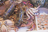 Lobster, crab, clams and shrimp ready for sale — Stock Photo