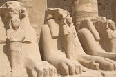 Statues of Rams at Karnak Temple ( Luxor, Egypt). — Stockfoto