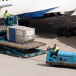 Boeing 767-332ER of Delta is being loaded - Stock Photo
