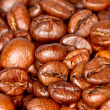 Coffee beans - Zdjcie stockowe