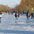 Iceskating the Elfstedentocht — Stock Photo #9414866