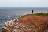 A photographer on Helgoland — 图库照片
