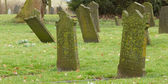 Tombstones on an old graveyard — Stock Photo