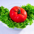 Salad leaves and tomato — Stock Photo
