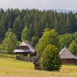 Stock Photo: Traditional slovak village