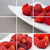 Wild strawberries collage — Stock Photo