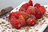 Wild strawberries and grated chocolate — Stock Photo
