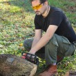 Man cutting tree trunk — Stock Photo #9545572