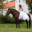 Stock Photo: Bride sitting on a horse in the park
