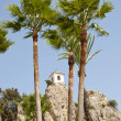 Belfry behind Palm Trees — Stock Photo #10401628