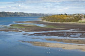 Estuary in Castro, Chile — Stock Photo