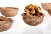 Group of cracked walnuts isolated on white — Stock Photo