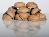 Hill of walnut's nutshells — Stock Photo