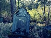 Old tombstone in forest — Stock Photo
