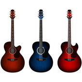 Set of acoustic guitars — Stock Vector